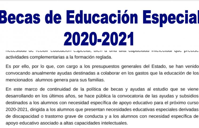 BECAS DE EDUCACIÓN ESPECIAL 2020-2021